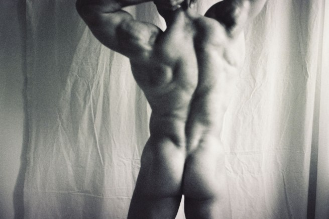Károly Halász. 'Body-builder in Renaissance manner' 2000