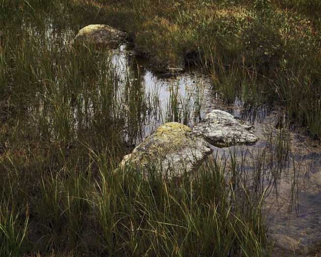 Johsel Namkung. 'Big Meadow, Washington Pass, Washington September, 2000' 2000
