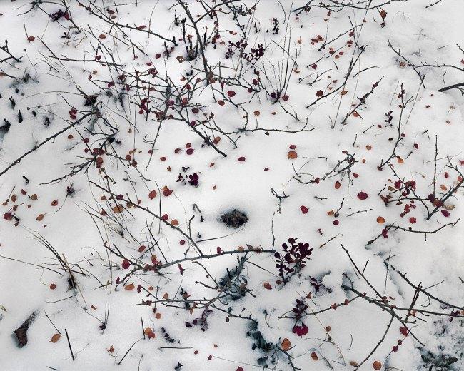 Johsel Namkung. 'Arrigetch, Alaska September, 1980' 1980