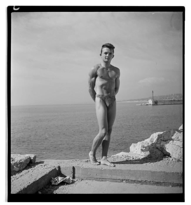 Gregor Arax. 'Pierre Laurent' 1948
