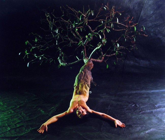 Tibor Gyenis. 'Hommage á Ana Mendieta' 1999