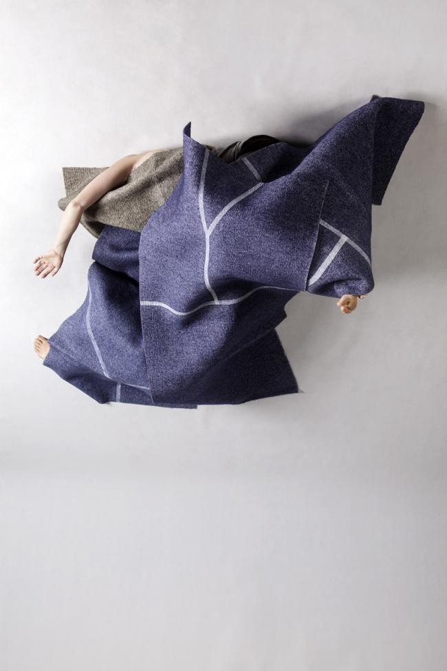 Anne Ferran. 'Agitated thrush' 2013
