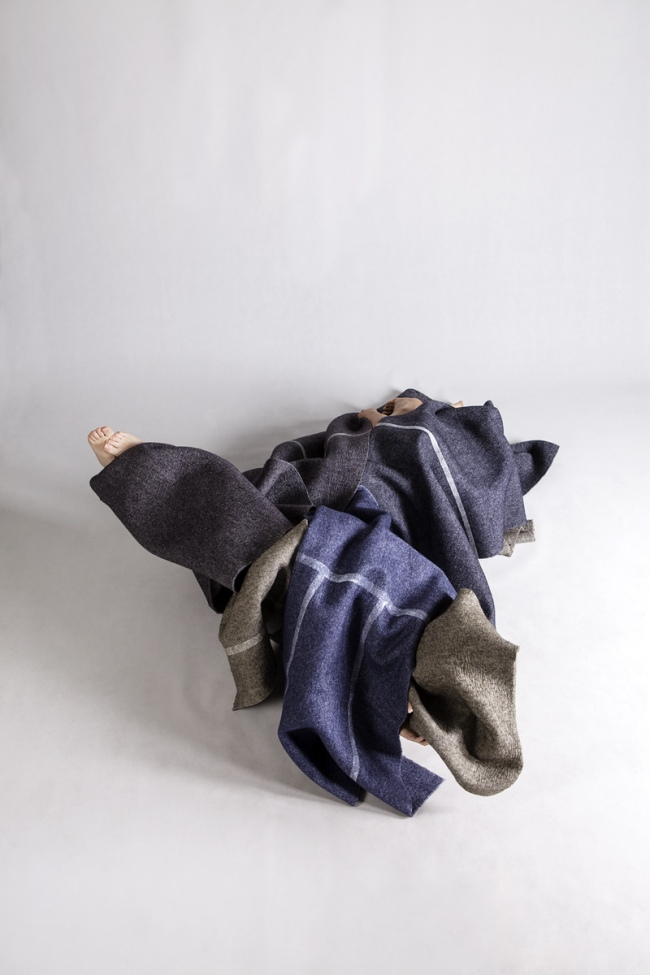 Anne Ferran. 'Clamorous shrike' 2013