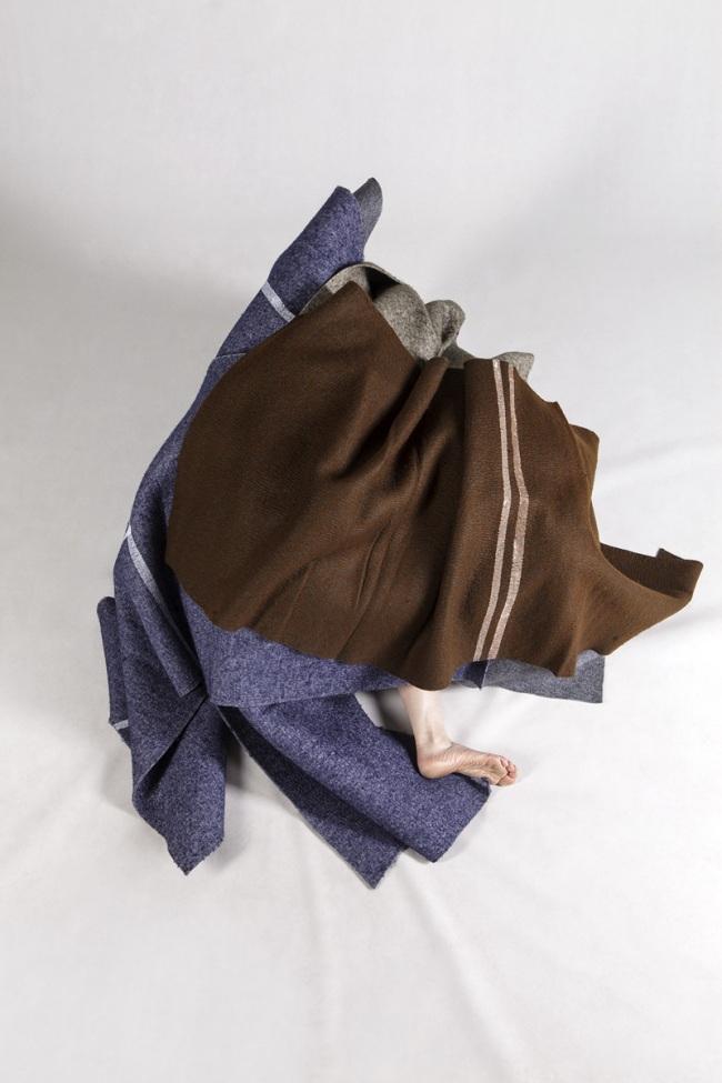 Anne Ferran. 'Conspicuous kite' 2013