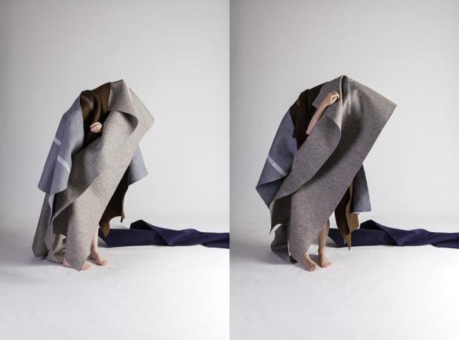 Anne Ferran. 'Feathered Emissary' 2013