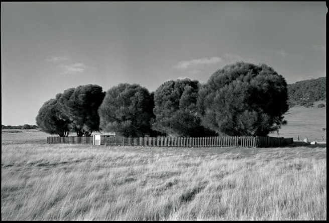 Ricky Maynard. 'The Healing Garden, Wybalenna, Flinders Island, Tasmania' 2005