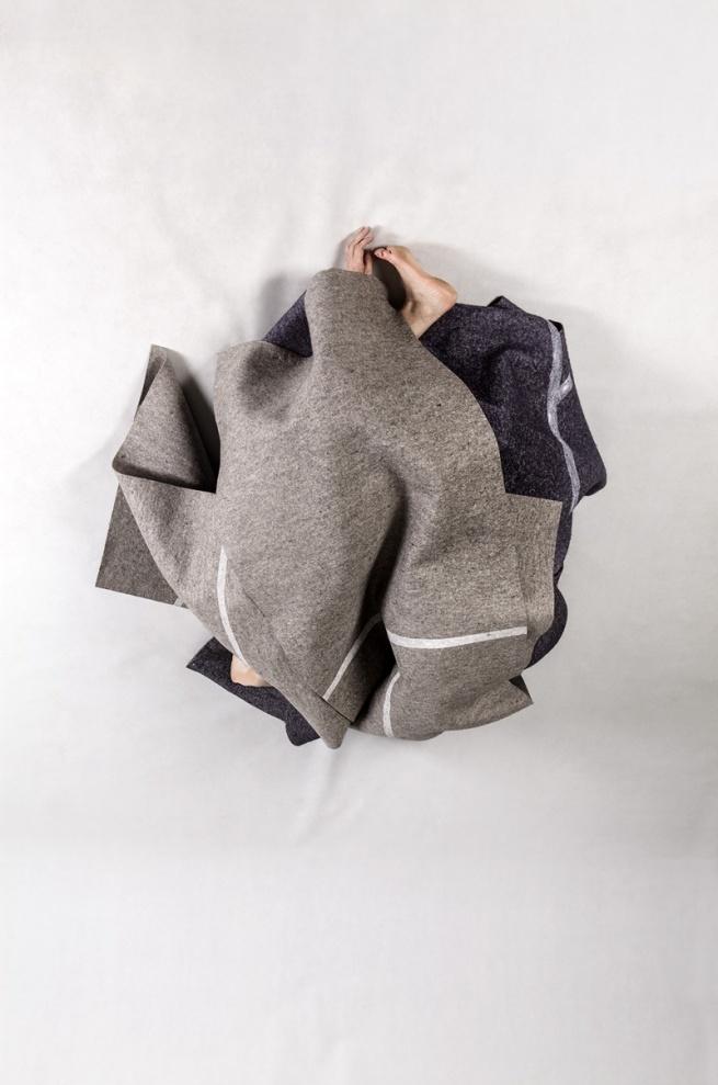 Anne Ferran. 'Stonebird' 2013