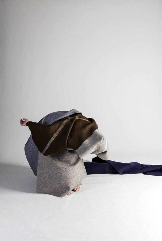 Anne Ferran. 'Tricoloured sylph' 2013