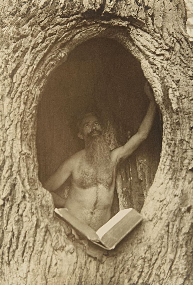 Max Lorenz Nielsen Male Nude In Tree  Art Blart-1008