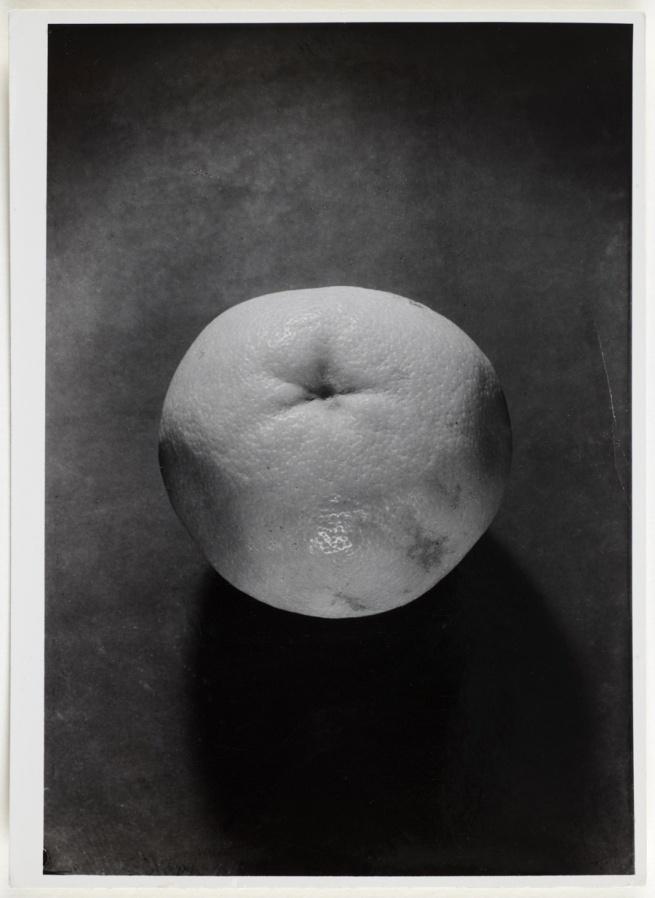 Otto Wols (Alfred Otto Wolfgang Schulze) 'Untitled (Still life - Grapefruit)' 1938 - August, 1939
