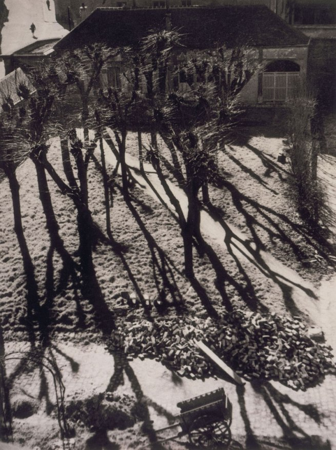 Laure Albin Guillot (1879-1962) 'Untitled' c. 1935-1940