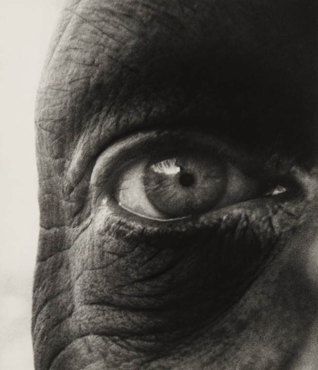 Bill Brandt (British, born Germany. 1904-1983) 'Jean Dubuffet' 1960