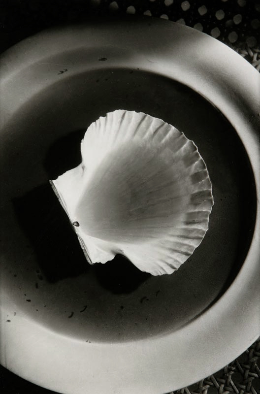 Otto Wols (Alfred Otto Wolfgang Schulze) 'Plate with soup and conch' 1936-1939
