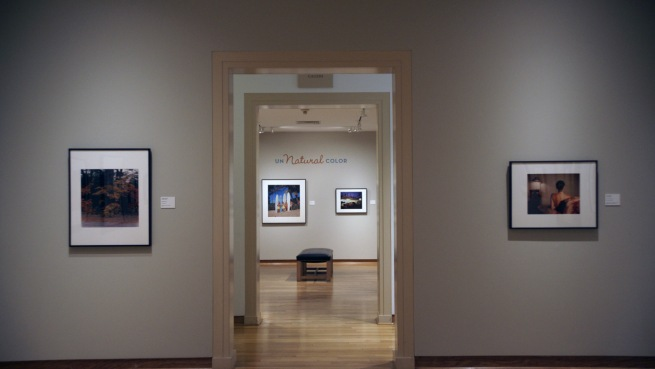 Installation photograph of the exhibition 'Un/Natural Color' at the Santa Barbara Museum of Art