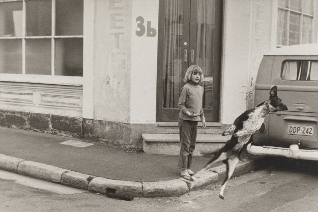 Carol Jerrems. 'Flying dog' 1973