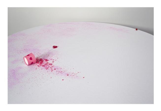 Anne MacDonald. 'Party no.5' 2012-13