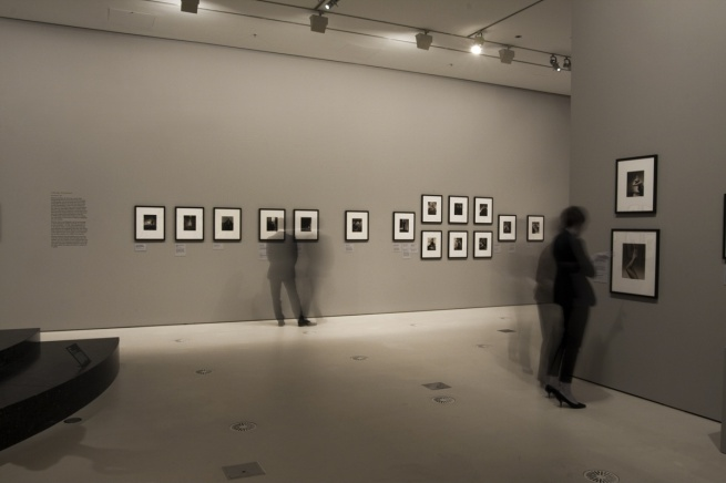 Installation photographs of the exhibition 'Edward Steichen & Art Deco Fashion' at NGV International by Marcus Bunyan