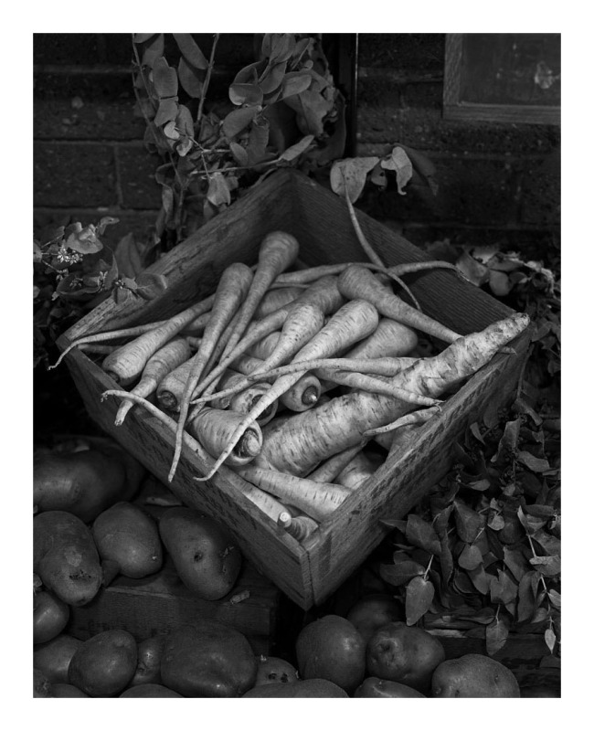 Marcus Bunyan. 'Parsnips and potatoes' 1994