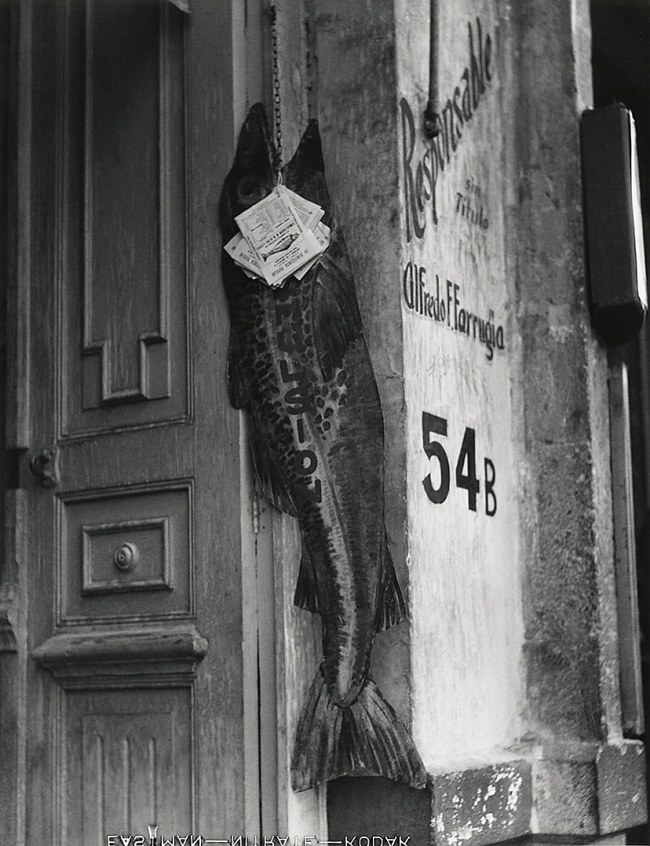 Manuel Álvarez Bravo. 'El pez grande se come a los chicos' 1932