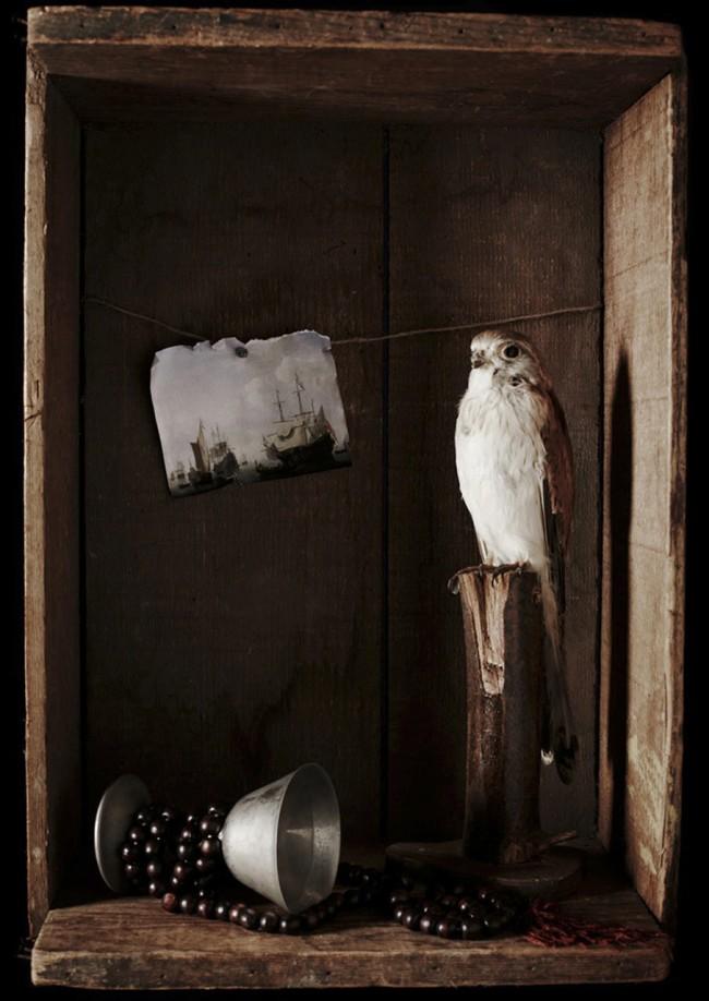 Amber McCaig. 'Untitled VII' 2013