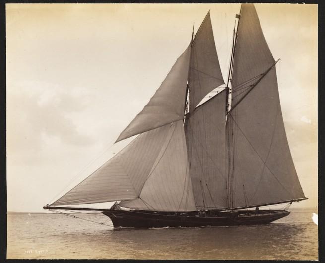Nathaniel Livermore Stebbins 1847-1922 (Photographer) 'Egeria' 1886-07-09