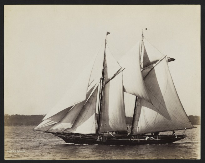 Nathaniel Livermore Stebbins 1847-1922 (Photographer) 'Gadabout' 1893-10-07