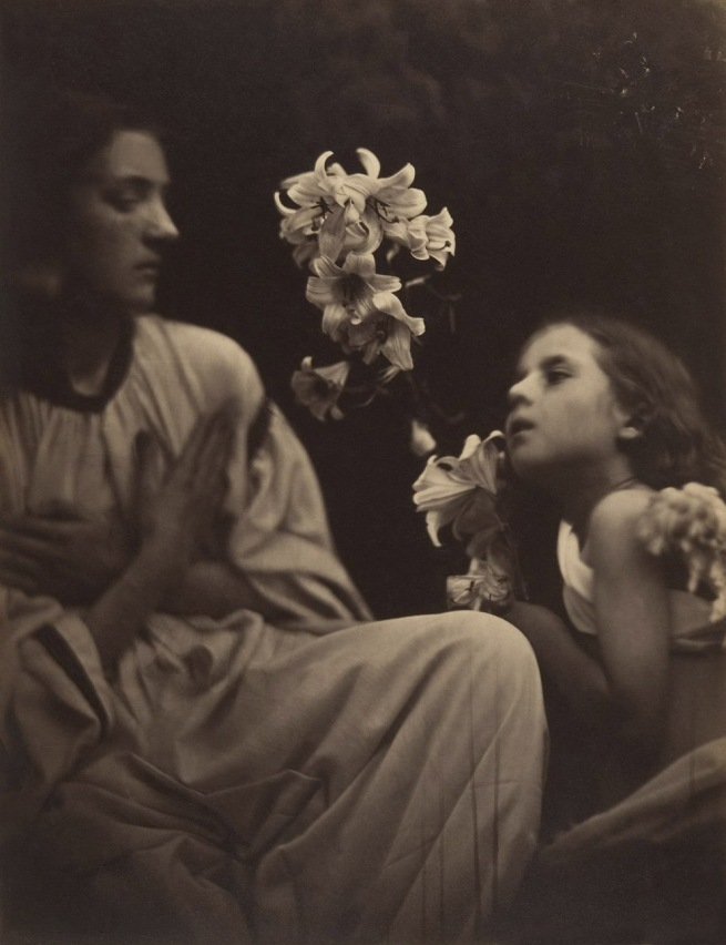 Julia Margaret Cameron (British (born India), Calcutta 1815 - 1879 Kalutara, Ceylon) 'A Study' 1865-66