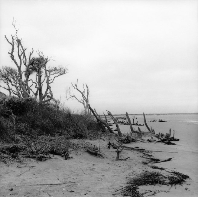 William Earle Williams. 'Folly Beach, South Carolina, 1999' 1999