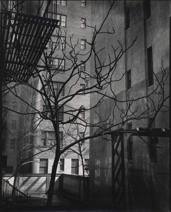 Brett Weston (American, 1911-1993) '[Courtyard, New York]' c. 1945