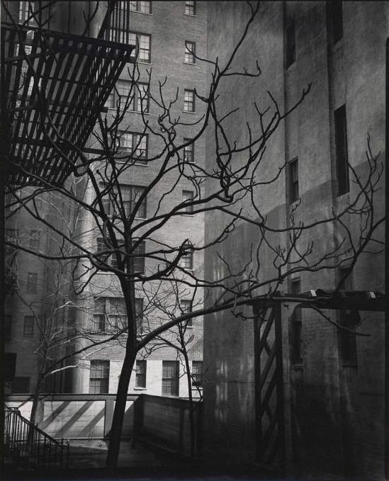 Brett Weston (American, 1911-1993) '[Courtyard, New York]' c. 1945