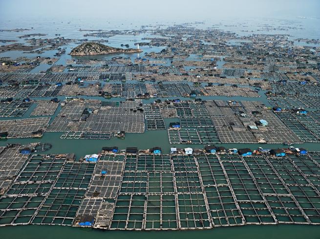 Edward Burtynsky. 'Marine Aquaculture #1, Luoyuan Bay, Fujian Province, China' 2012