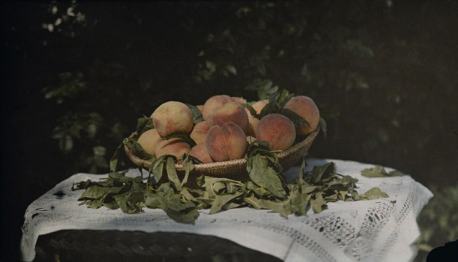 Laura Gilpin (1891-1979) 'Still Life with Peaches' 1912