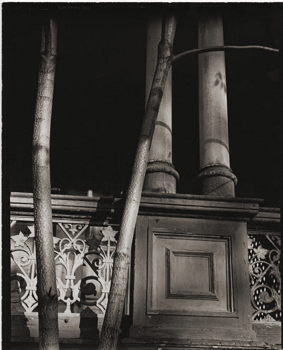 Brett Weston (American, 1911-1993) '[Pillars and tree, New York]' 1944