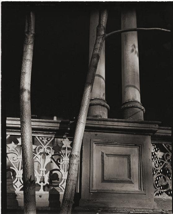 Brett Weston (American, 1911-1993) '[Pillars and tree, New York]' 1944