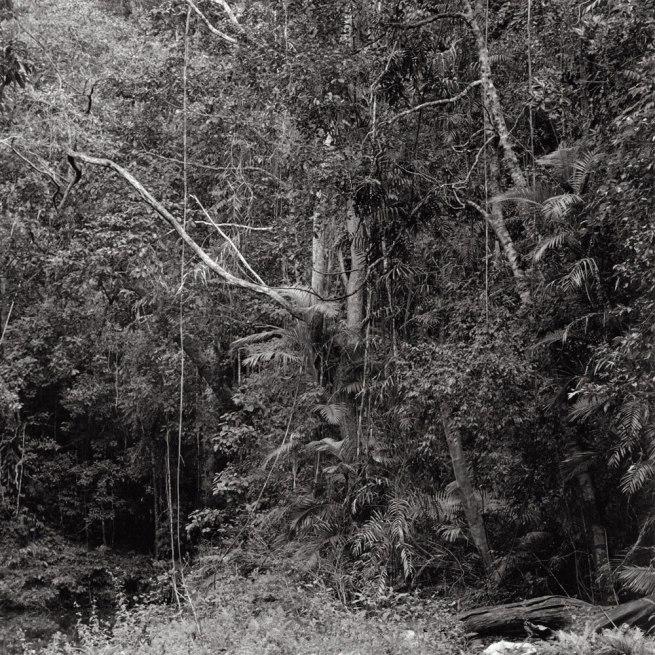 Claudia Terstappen. 'Namandi spirit [Queensland, Australia]' 2002