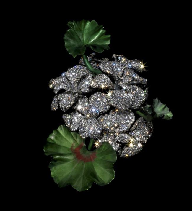 JAR. 'Geranium brooch' 2007