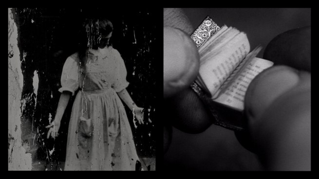 Siobhan Davies and David Hinton. 'Alice in Wonderland' 2012