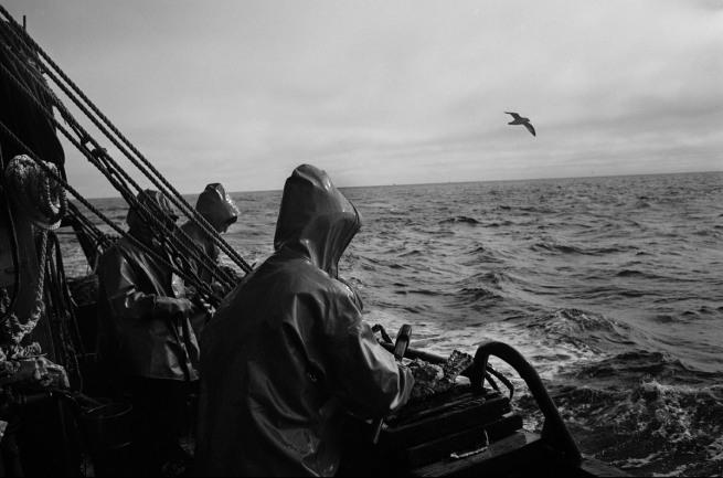 Oleg Klimov. 'Illegale krabvangst in de Ochtoka Zee / Kamtsjatka' (Illegal crab catch in the Ochtoka Sea / Kamchatka) Augustus 2007