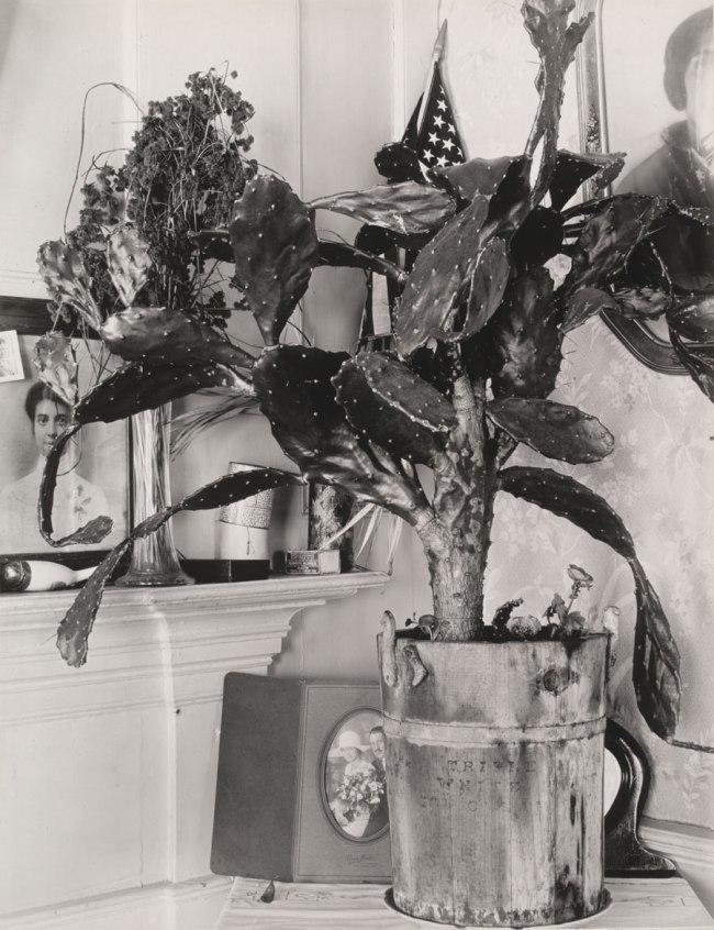 Walker Evans (American, 1903-1975) 'Interior Detail of Portuguese House' 1930