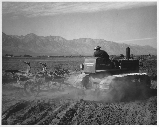 Ansel Adams (American, 1902-1984) 'Benji Iguchi driving tractor in field, Manzanar Relocation Center' 1943