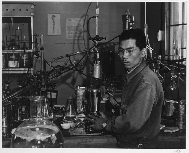 Ansel Adams (American, 1902-1984) 'Frank Hirosama [i.e., Hirosawa] in laboratory, Manzanar Relocation Center' 1943
