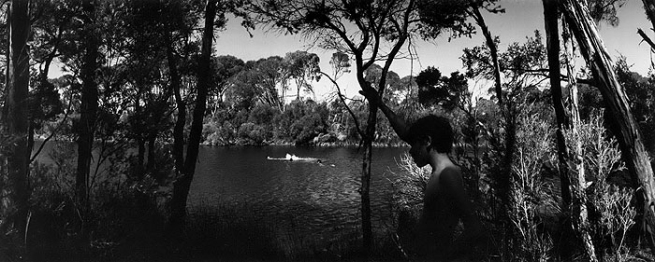 Wesley Stacey (Australia, b. 1941) 'Willie near Mallacoota' 1979