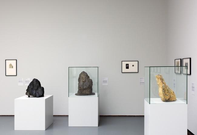 Installation photograph of the exhibition 'Brancusi, Rosso, Man Ray – Framing Sculpture' at Museum Boijmans Van Beuningen, 2014