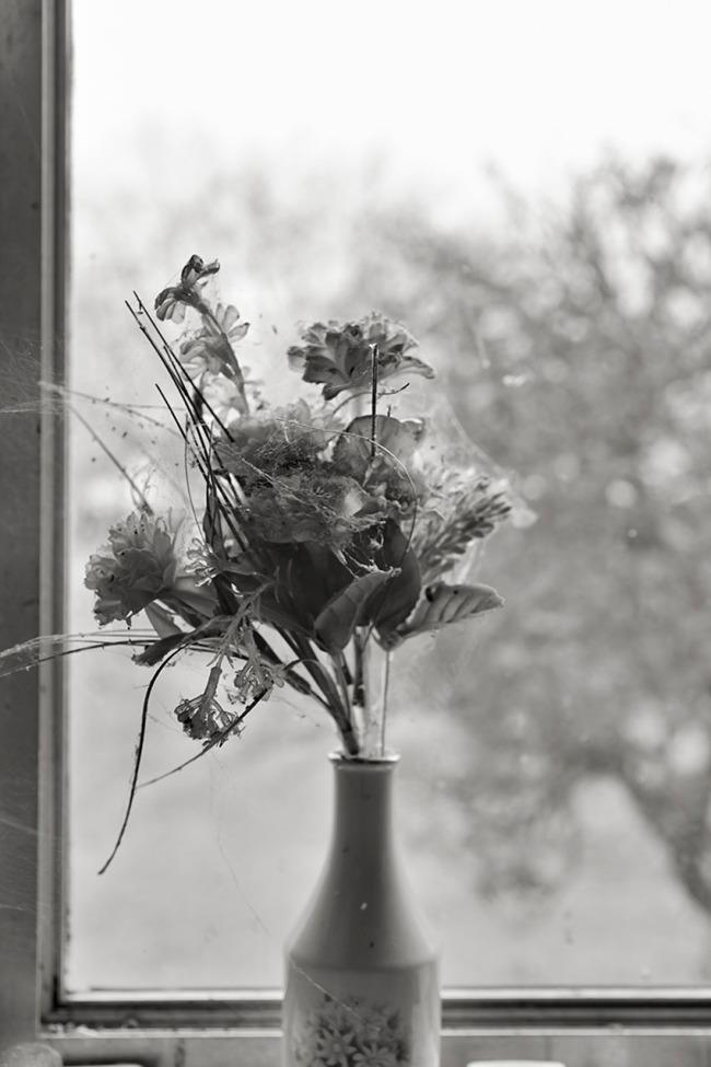 Kristian Laemmle-Ruff. 'Old Flowers' 2014