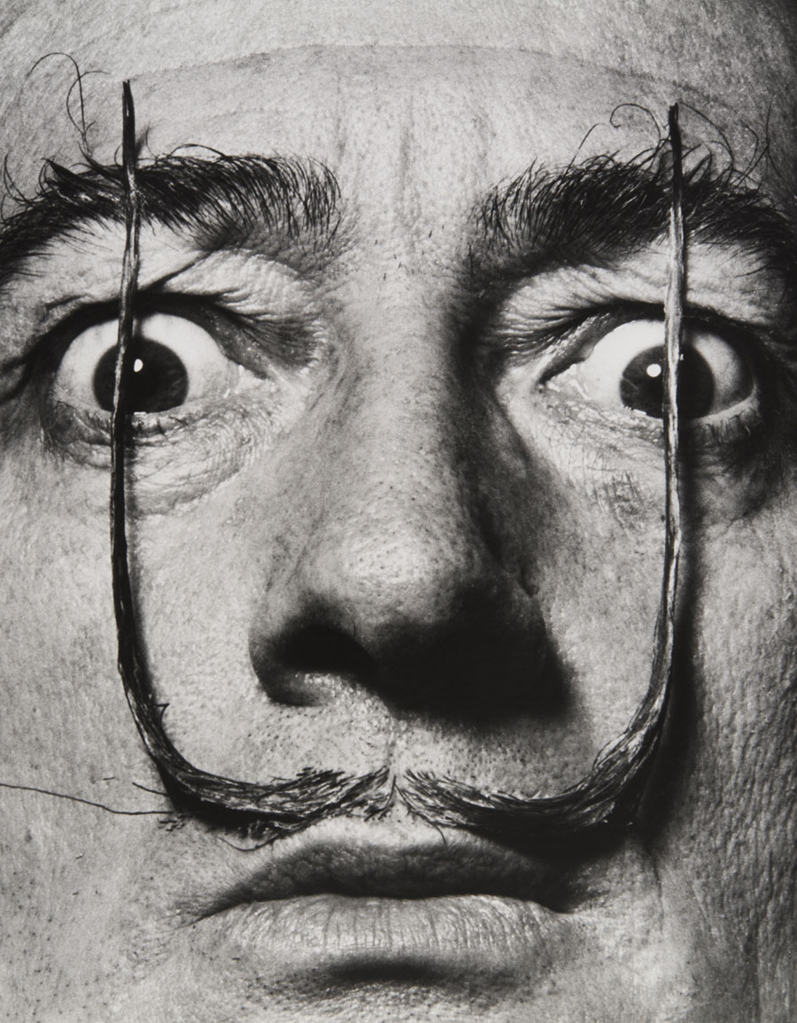 Philippe Halsman Portrait of Salvador Dalí with American football ...