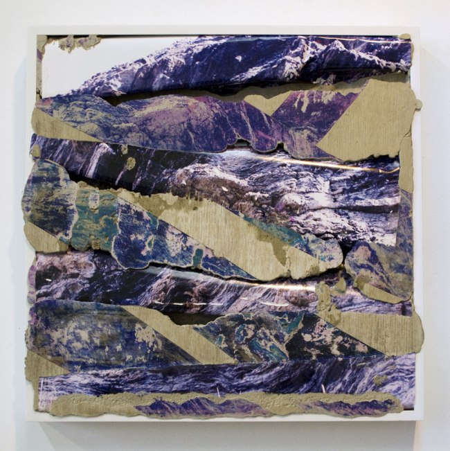 Letha Wilson. 'Colorado Purple' 2012