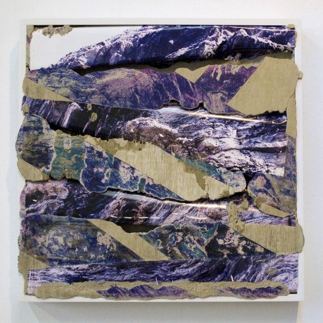 Letha Wilson. 'Colorado Purple' 2012