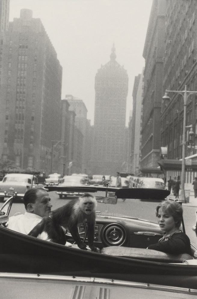 Garry Winogrand. 'Park Avenue, New York' 1959