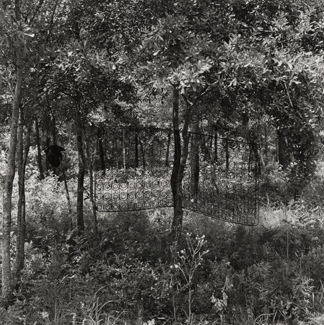 Carrie Mae Weems. 'Untitled (Box Spring in Tree)' (from 'Sea Islands Series') 1991-92