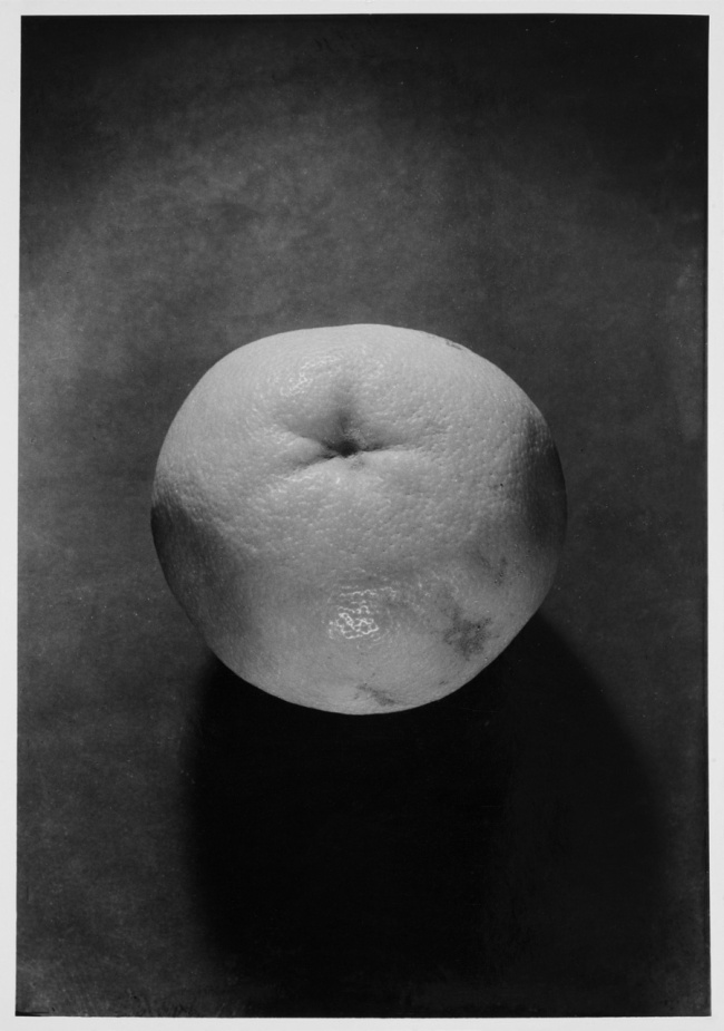 Wols. 'Untitled [Still Life - Grapefruit]' 1938 - August 1939